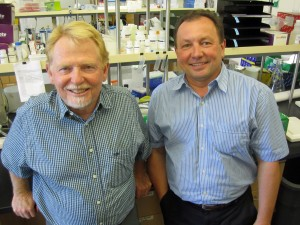 University of Utah biology professor Wayne Potts and human genetics research associated Petr Tvrdik.
