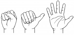 Illustration of a clenched or buttressed fist, an open fist and an open hand. Cadaver arms were positioned in these three ways to punch or slap a padded weight in University of Utah experiments that backed the idea that natural selection shaped human hand proportions not only for manual dexterity, but so men could fistfight over women. A clenched fist protects the hand from injury better than the other two positions.