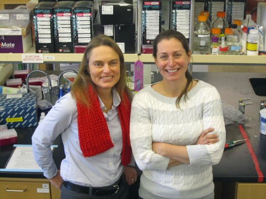 Denise Dearing, distinguished professor and chair of biology at the University of Utah, and Patrice Kurnath, a doctoral student in biology.