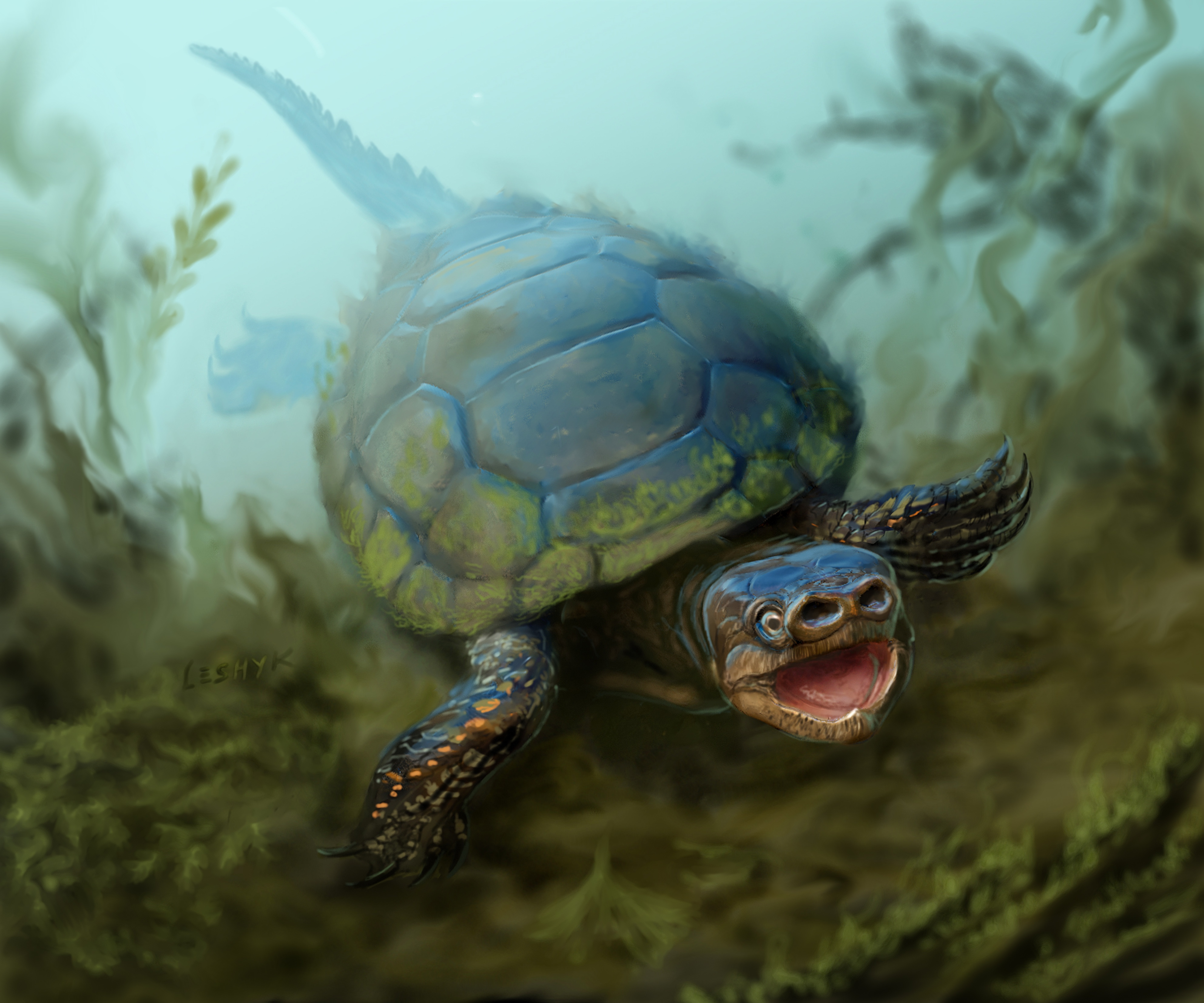 76 million year old extinct species of pig snouted turtle