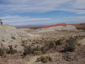 Co-author Adriana Mancuso (far left) investigates badlands of the Chañares Formation, deposited 236 to 234 million years ago in what is now Talampaya National Park, Argentina.