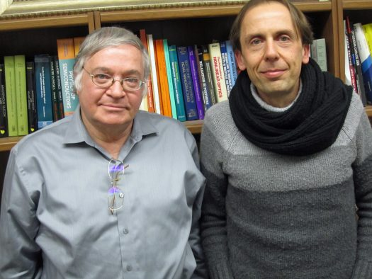 University of Utah physicists Z. Valy Vardeny and Christoph Boehme published a new study in Nature Materials demonstrating that a range of organic semiconductors can be used to convert a so-called magnetic spin current into electric current. They don't yet know the efficiency of this power-conversion method, but say it has possible future uses in future solar cells, batteries and electronic devices like computers and cell phones.