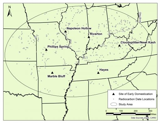 This map shows the area covered by a new University of Utah study that concludes a population boom and resulting scarcity of wild foods are what caused early people in eastern North America to domesticate wild food plants for the first time on the continent starting about 5,000 year ago. The triangles and names represent archaeological sites previously identified as locations where one or more of the these plants first were domesticated: squash, sunflower, marshelder and pitseed goosefoot, a relative of quinoa. The small circles are sites where radiocarbon-dated artifacts have been found, with a single circle often representing many dated artifacts. The study area includes much of eastern North America inland from the Atlantic and Gulf coasts.